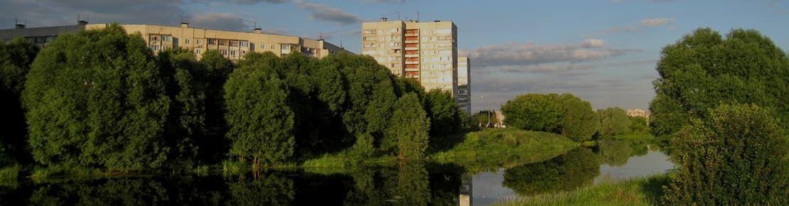 Деревянные окна от производителя в Жуковском