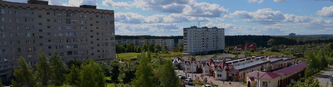 Деревянные окна от производителя в Краснозаводске