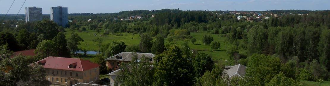 Деревянные окна от производителя в Менделеево