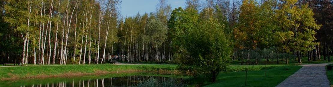 Деревянные окна от производителя в Шереметьевском
