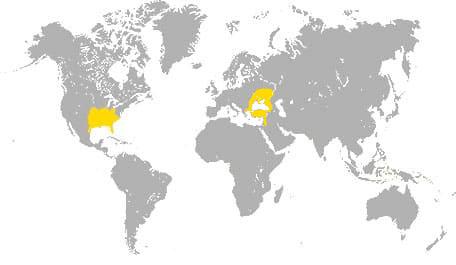 Карта произростания ореха